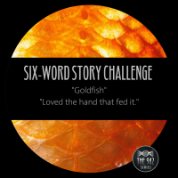 "Six-Word Story Challenge - ""Goldfish"""