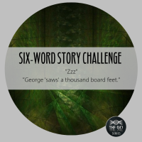 "Six-Word Story Challenge - ""Zzz"""