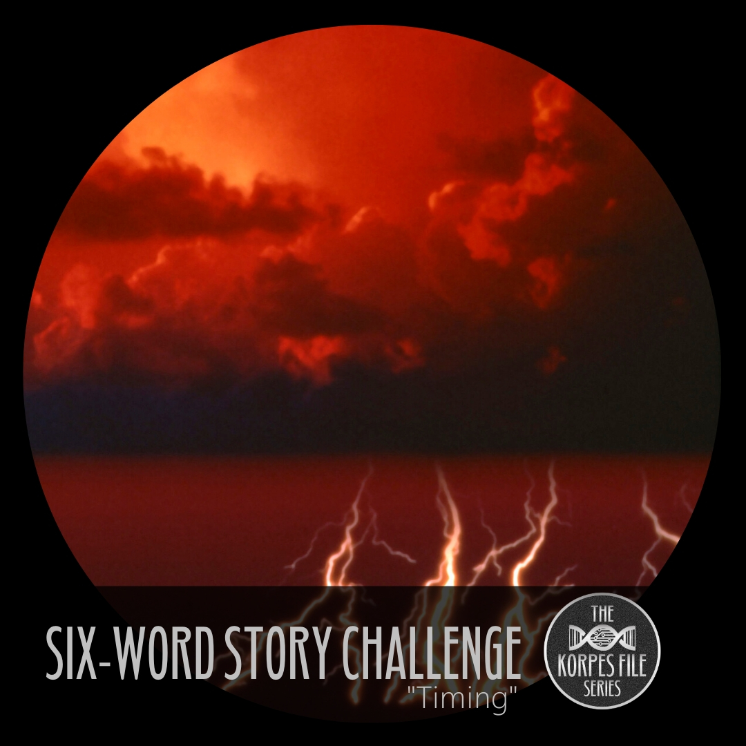 "Six-Word Story Challenge – ""Timing"""