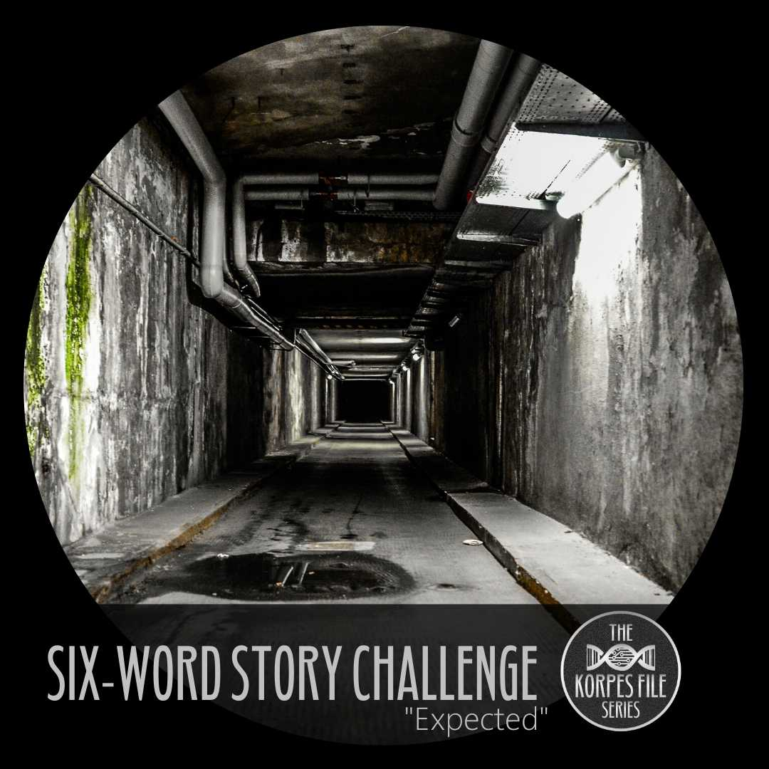 "Six-Word Story Challenge – ""Expected"""